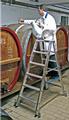 Stufen-Doppelleiter mit Rollen
